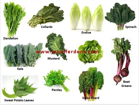 Menards Kitchen Islands Top 28 Type Of Salad Greens What Are The Different