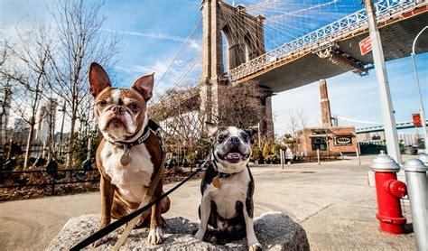 most friendly cities 14 most friendly cities in the united states