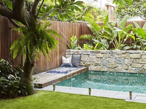 expert advice top plants   poolside eco outdoor