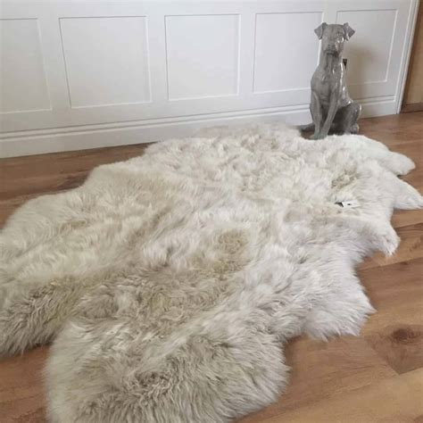 luxury sheepskin rug luxury oyster sheepskin rug x l by cowshed interiors notonthehighstreet