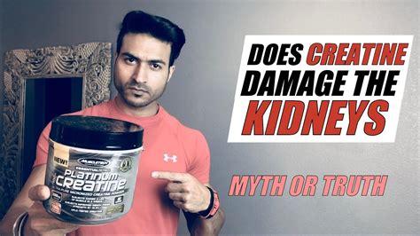 creatine loading myth does creatine damage the kidney myth or