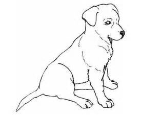 儿童画狗怎么画 百度知道