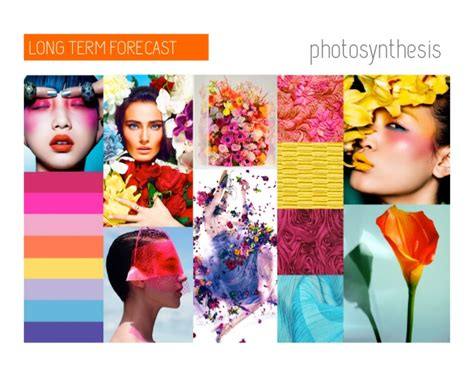 the trend book focuses of the trend forecasting for autumn trend council trend forecasting service