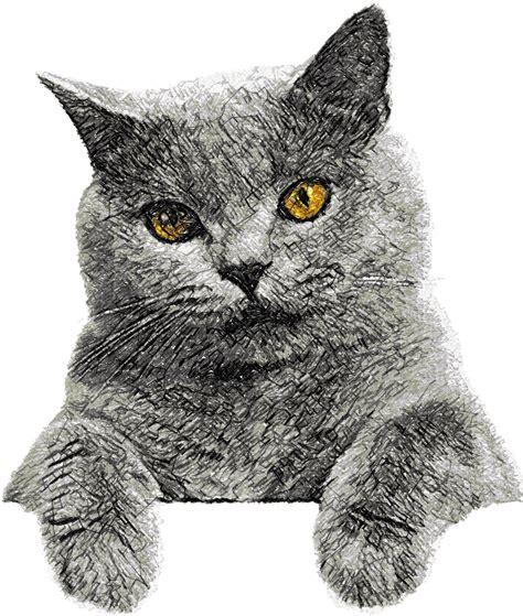 embroidery cat cat photo stitch free embroidery design 4 free