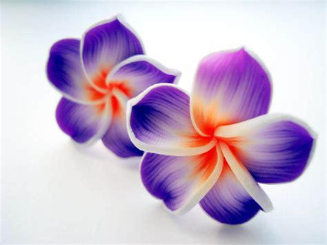 Hawaiian Flowers by Hawaiian Flowers Purple Hawaii Flower Clip On Earrings