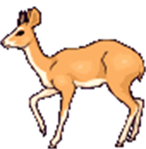 animated deer pictures animations true deer myspace cliparts