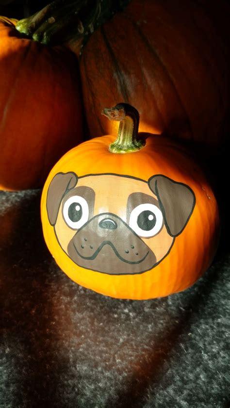 pug dog pumpkin painted  brandi johner dog pumpkin