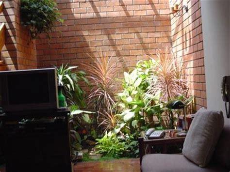 imagenes jardines interiores jardines interiores casas peque 241 as buscar con google