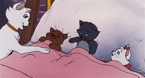 Mouse In Room Is It Safe To Sleep by Sleeping Cat Gif