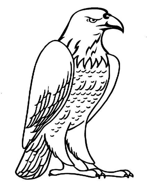 eagle coloring pages preschool printable eagle coloring pages ideas for preschool