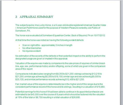 sle of appraisal report my business the appraisal report