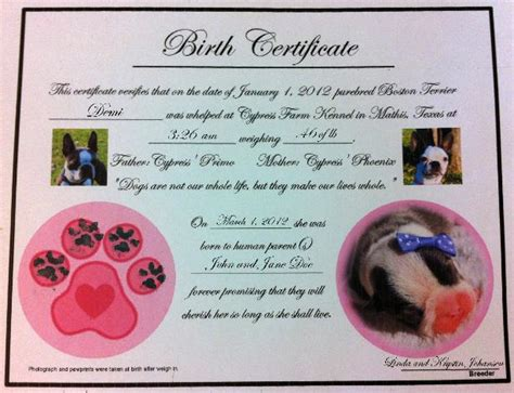 puppy birth certificate template free cypress farm kennel puppy care kits