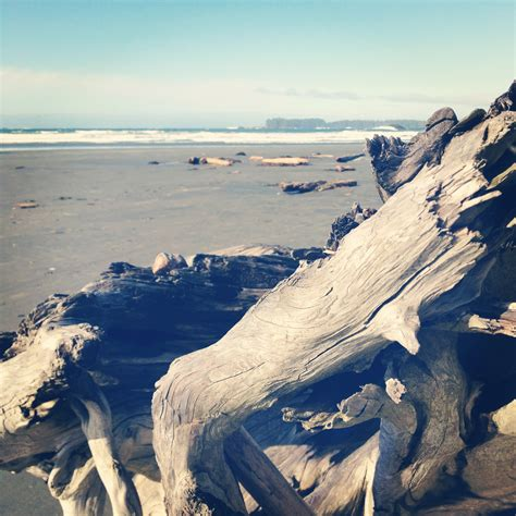 rugged mountain vancouver island beachwood guesthouse ucluelet simplebooklet