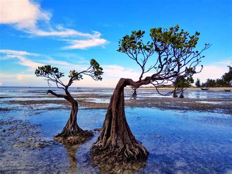 walakiri beach sumba timur nttindonesia ntt natural culture tourism information center