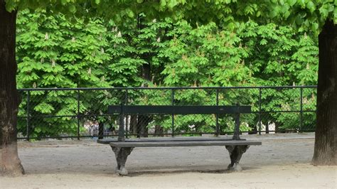 park bench tuileries gardens paris france