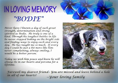 Animal Rescue Tribute by A Tribute To Bodie Saving Pets One At A Time Animal