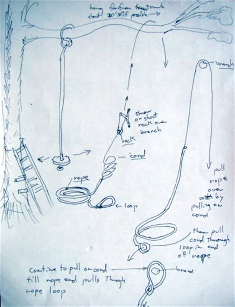 how to build a rope swing without a tree 1000 images about tree swing on pinterest trees a tree
