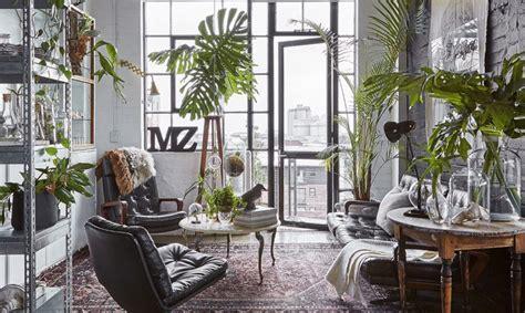 arredare casa con le piante un appartamento moderno arredato con mobili di famiglia e