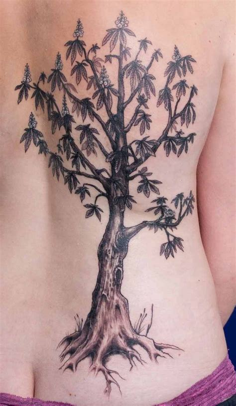 mango tree tattoo mango tree design intelligent person
