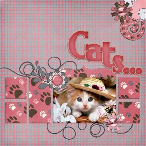 scrapbook layout cat 109 best images about cat dog scrapbooking on pinterest