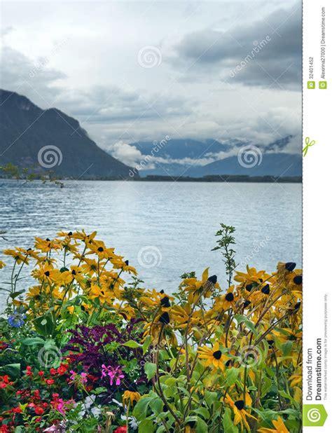 Geneva Flowers 12 morning landscape with flowers on lake geneva stock