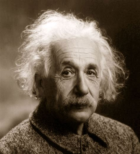 einstein biography in hindi language free essays on einstein hindi through essaydepotcom