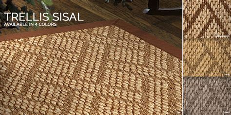 Sisal Rugs Gold Coast by Trellis Carpet Runner Carpet Vidalondon