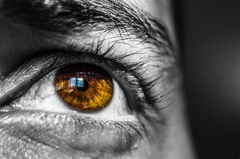 close   human eye  stock photo