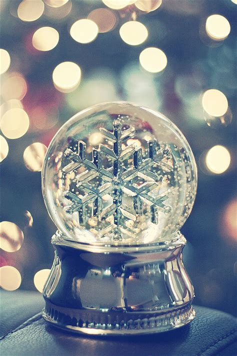 snow flake snow globe pictures photos and images for