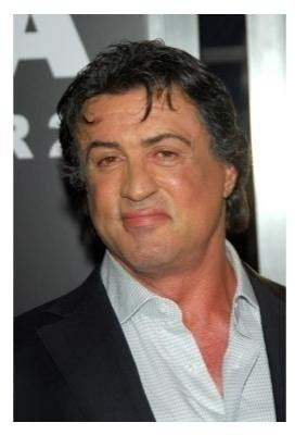 Sylvester Stallones Plane Searched In Australia by Sylvester Stallone S Jet Searched