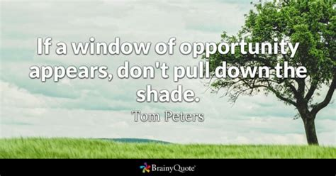 Windows That Dont Open Inspiration Window Quotes Brainyquote
