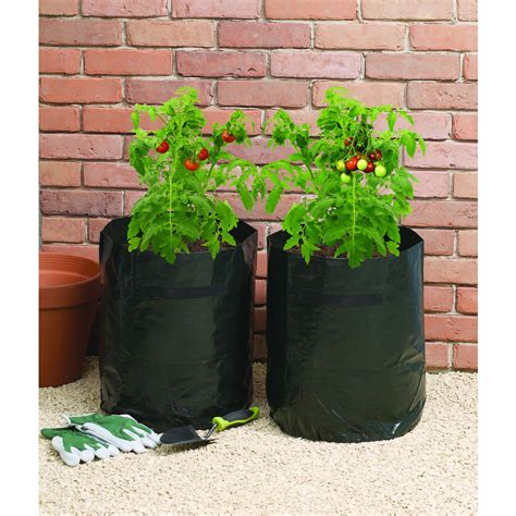 wilko grow bag tomato 46l 2pk at wilko