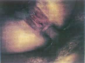 paula yates michael hutchence naked 3 photos if you like these photos