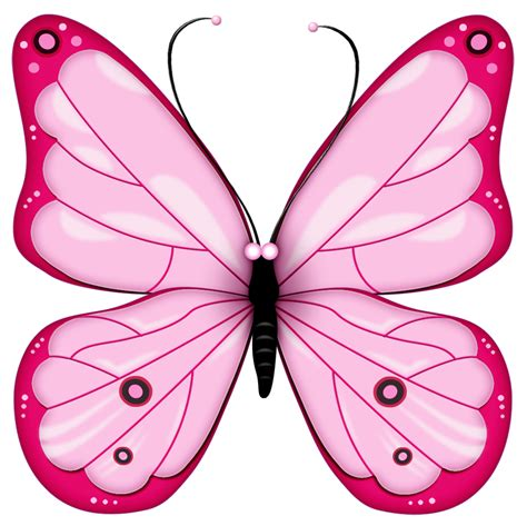 free butterfly clipart butterfly free clip free large images