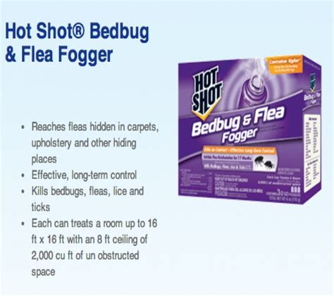 best fogger for bed bugs bed bugs fogger best flea fogger on the market jeff