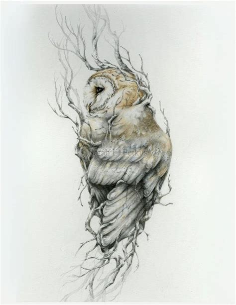 white owl tattoo barn owl 16 x 20 print owl drawing by
