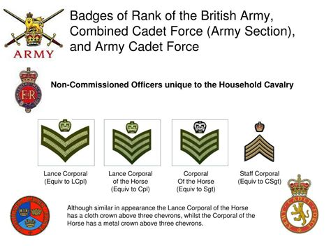 army s sections ppt british armed forces badges of rank including