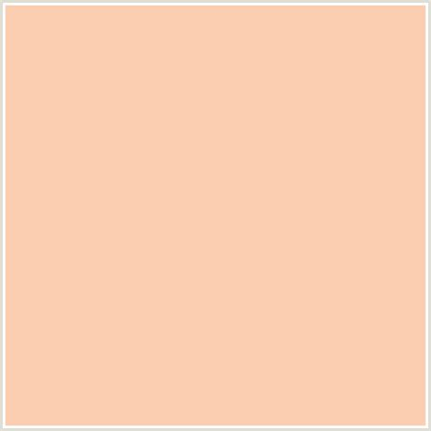 colours that go with peach fbceb1 hex color rgb 251 206 177 apricot peach