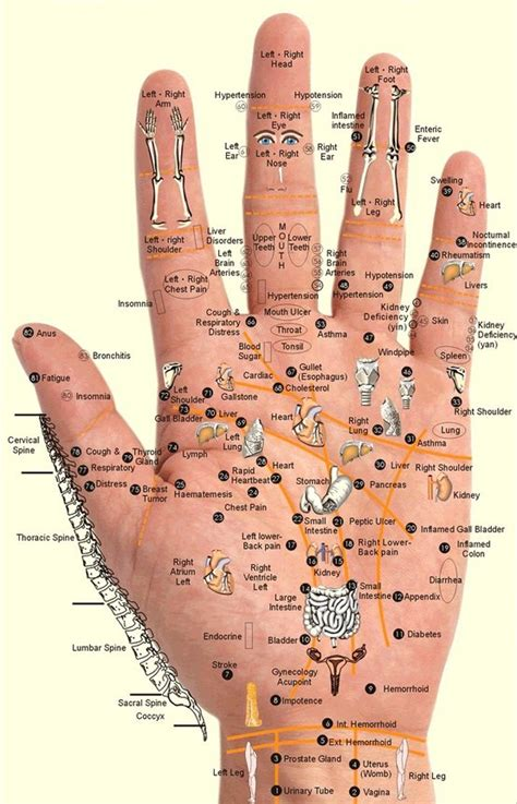 acupressure diagram of pressure points are you anxious or stressed try this ancient japanese