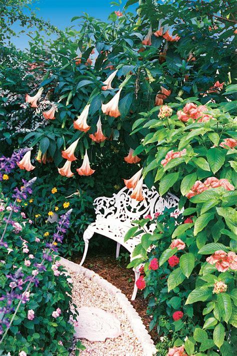 A Palm Beach County Flower Garden Pamela Combines Palm Gardens Flowers