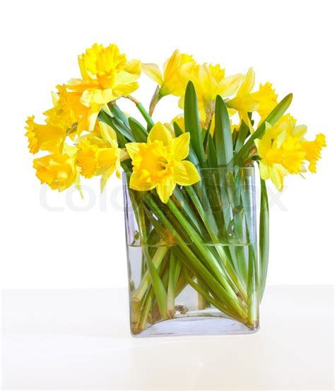 Flower Vase Clip Art A Bouquet Of Beautiful Daffodils In A Glass Vase Isolated