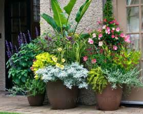 kellough residence perennial flowers potted container