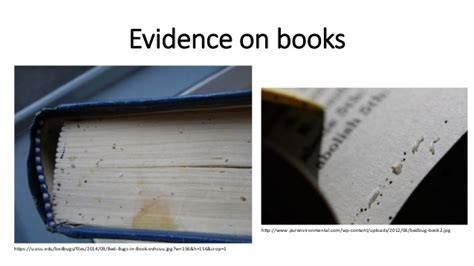 Can Bed Bugs Live In Books by Bed Bugs How To Protect Your Library From Infestation