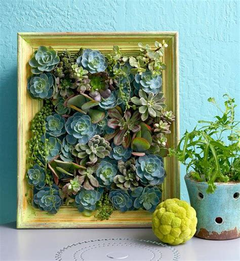 How To Make Vertical Succulent Garden How To Make A Succulent Vertical Garden Create A Living