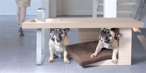 casa di riposo chio animali in casa accessori e arredo per gli amici a