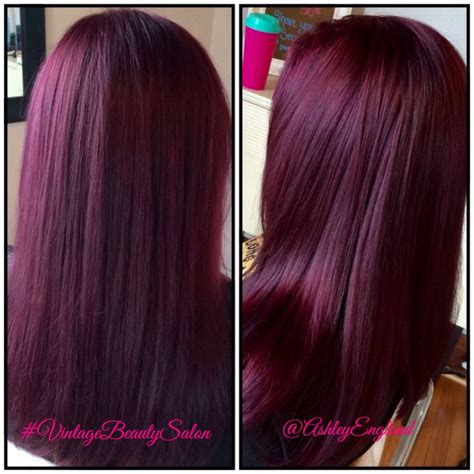 eggplant color hair best 25 eggplant hair ideas on