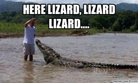 Lizard Meme - lizard meme memes