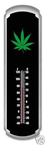 cannabis grow room temperature grow room setup