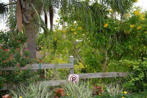 South Texas Botanical Gardens Nature Center Picture Of Botanical Gardens Corpus Christi