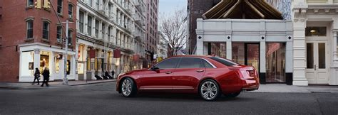 What Will Cadillac Make In 2020 by Cadillac Coming To Australia In 2020 Photos Caradvice